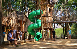 Království lesa Lipno